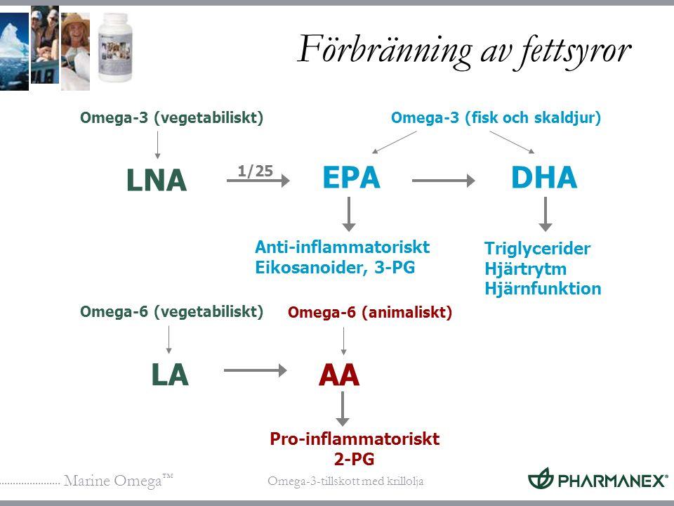 Marine Omega ™ Omega-3-tillskott med krillolja Förbränning av fettsyror Pro-inflammatoriskt 2-PG LNA Omega-3 (vegetabiliskt) Anti-inflammatoriskt Eiko