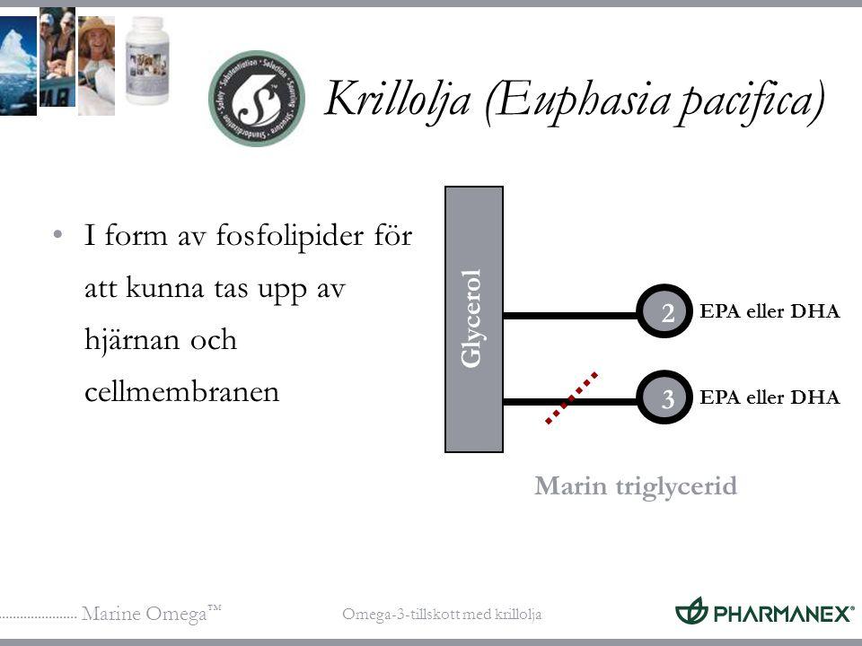 Marine Omega ™ Omega-3-tillskott med krillolja Krillolja (Euphasia pacifica) I form av fosfolipider för att kunna tas upp av hjärnan och cellmembranen