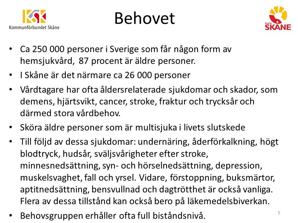 Behovet Ca 250 000 personer i Sverige som får någon form av hemsjukvård, 87 procent är äldre personer. I Skåne är det närmare ca 26 000 personer Vårdt
