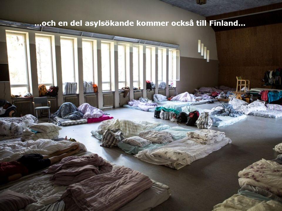 …och en del asylsökande kommer också till Finland…