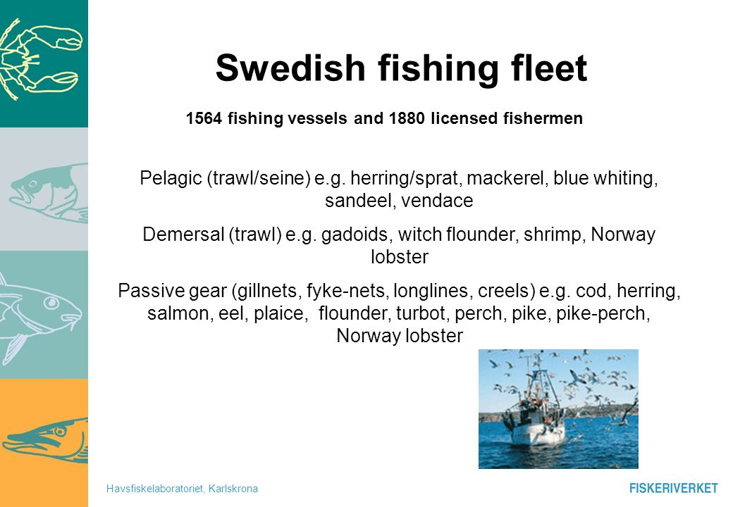 Havsfiskelaboratoriet, Karlskrona Baltic Mainly small trawlers <24 m pelagic and demersal Passive gears mainly gillnet and longlines