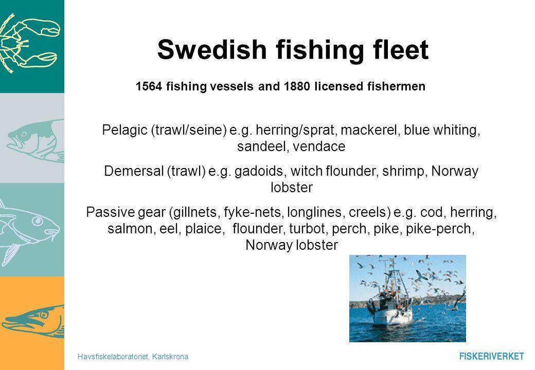 Havsfiskelaboratoriet, Karlskrona Fishery dependent data vs Scientific Surveys 3 2 3 4 5+ 2 3