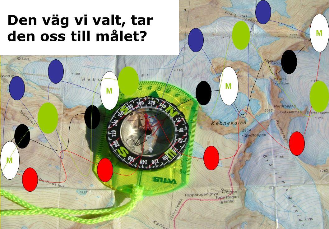 M M M M Den väg vi valt, tar den oss till målet?
