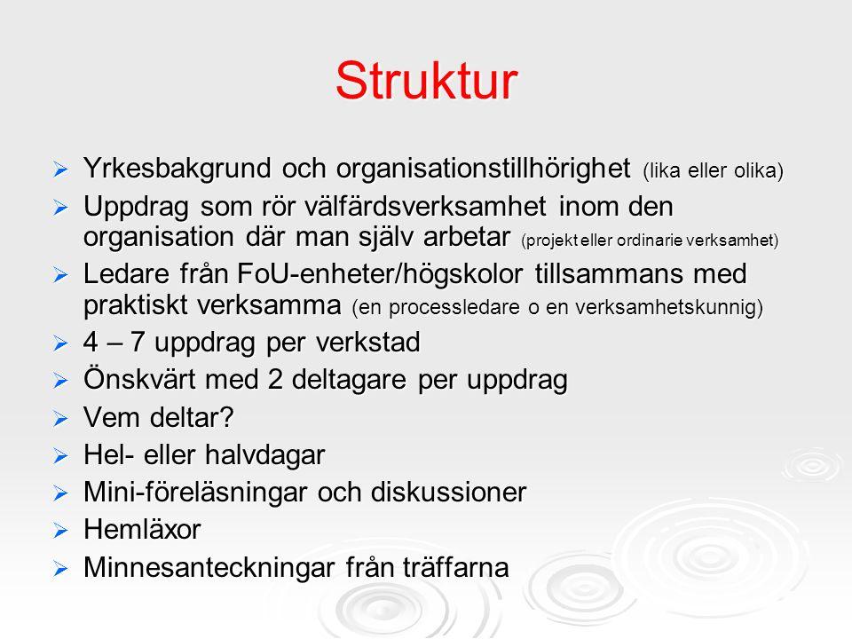 Struktur  Yrkesbakgrund och organisationstillhörighet (lika eller olika)  Uppdrag som rör välfärdsverksamhet inom den organisation där man själv arb