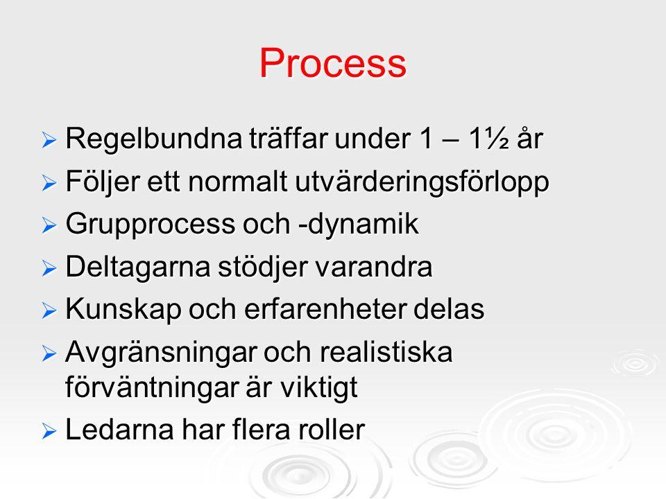 Process  Regelbundna träffar under 1 – 1½ år  Följer ett normalt utvärderingsförlopp  Grupprocess och -dynamik  Deltagarna stödjer varandra  Kuns