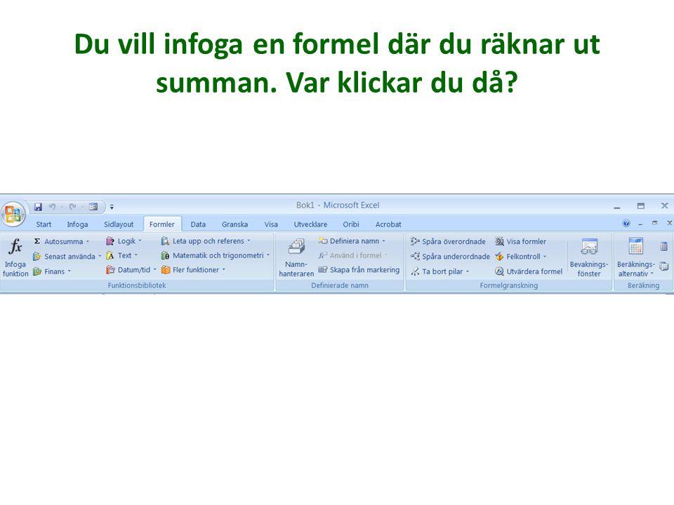 Formler De funktioner som tidigare använts i den här datorn Få upp en dialogruta där du kan leta efter alla funktioner. Autosumma (samma knapp finns ä