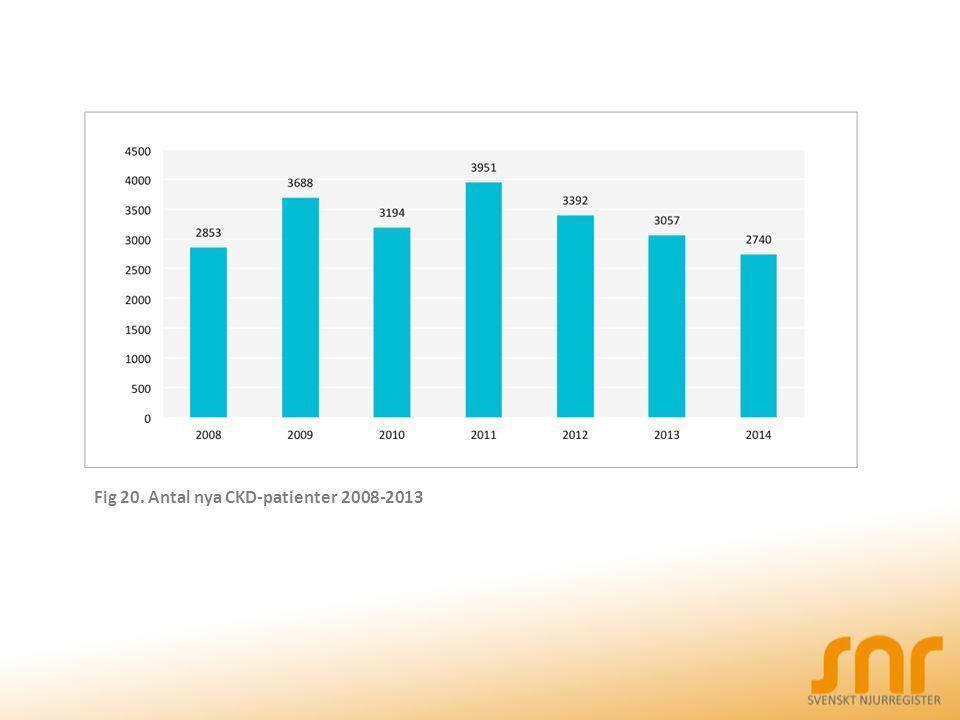 Fig 20. Antal nya CKD-patienter 2008-2013