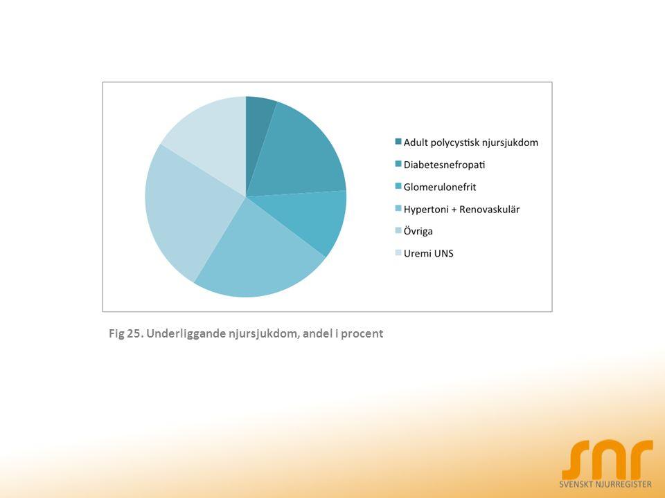 Fig 25. Underliggande njursjukdom, andel i procent