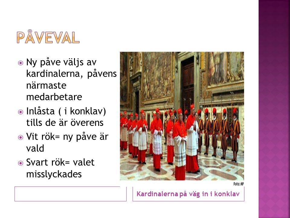Kardinalerna på väg in i konklav  Ny påve väljs av kardinalerna, påvens närmaste medarbetare  Inlåsta ( i konklav) tills de är överens  Vit rök= ny