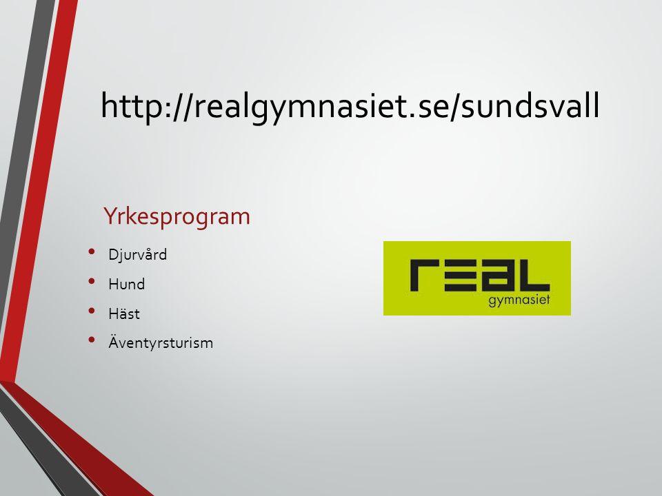 http://realgymnasiet.se/sundsvall Yrkesprogram Djurvård Hund Häst Äventyrsturism