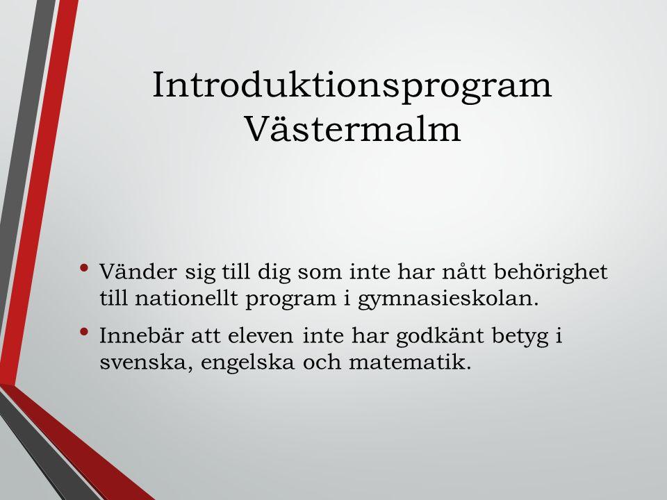 Introduktionsprogram Västermalm Vänder sig till dig som inte har nått behörighet till nationellt program i gymnasieskolan. Innebär att eleven inte har