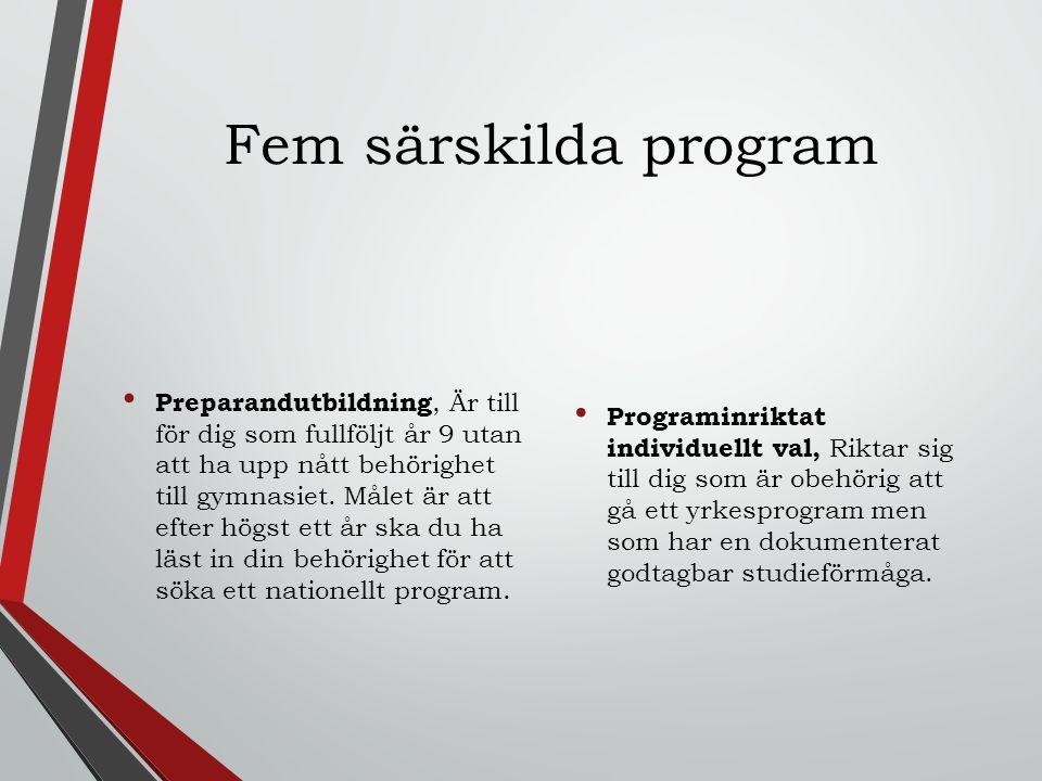 Fem särskilda program Preparandutbildning, Är till för dig som fullföljt år 9 utan att ha upp nått behörighet till gymnasiet.
