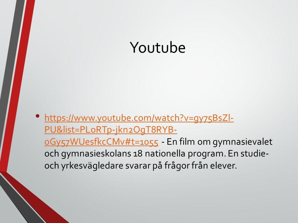 Youtube https://www.youtube.com/watch?v=gy75BsZl- PU&list=PLoRTp-jkn2OgT8RYB- oGy57WUesfkcCMv#t=1055 - En film om gymnasievalet och gymnasieskolans 18 nationella program.