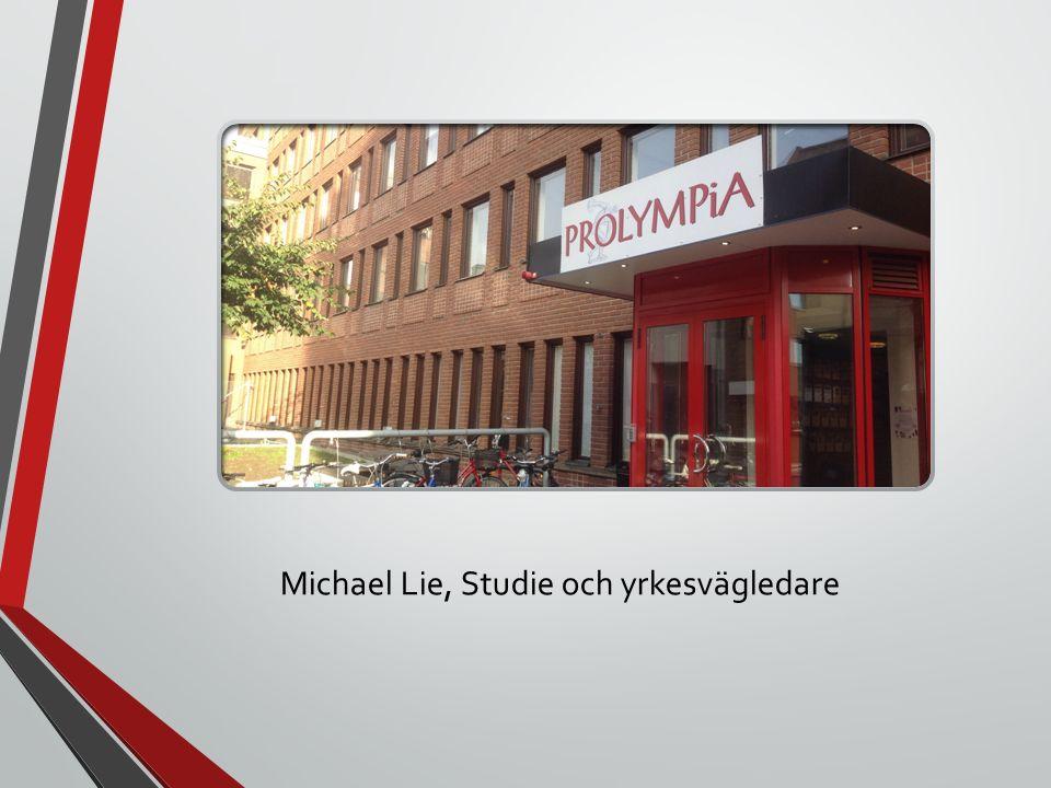 Michael Lie, Studie och yrkesvägledare