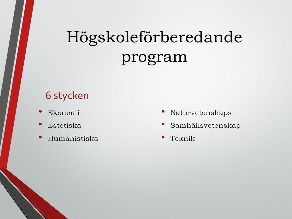 Högskoleförberedande program 6 stycken Ekonomi Estetiska Humanistiska Naturvetenskaps Samhällsvetenskap Teknik