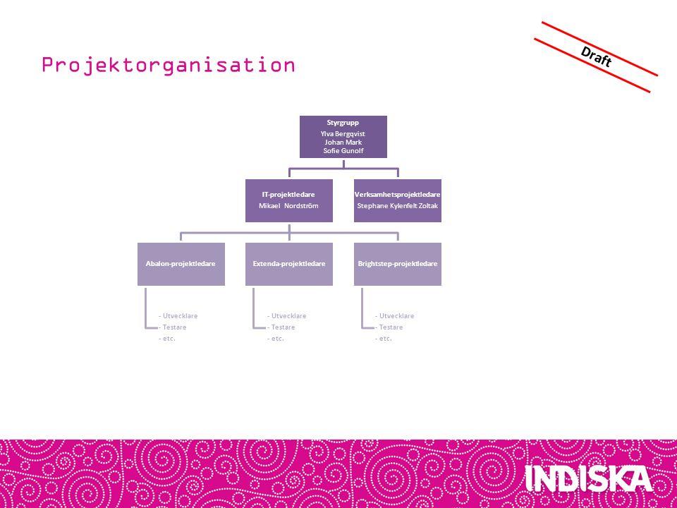 Innehåll Tidplan & Projektorganisation Processflöden Verksamhetskrav Systemkarta Öppna frågor