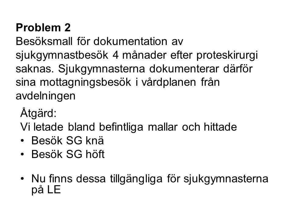 Problem 2 Besöksmall för dokumentation av sjukgymnastbesök 4 månader efter proteskirurgi saknas.