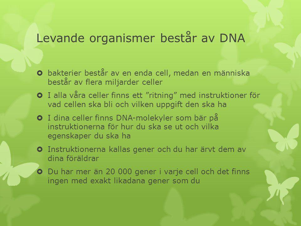 Levande organismer består av DNA  bakterier består av en enda cell, medan en människa består av flera miljarder celler  I alla våra celler finns ett ritning med instruktioner för vad cellen ska bli och vilken uppgift den ska ha  I dina celler finns DNA-molekyler som bär på instruktionerna för hur du ska se ut och vilka egenskaper du ska ha  Instruktionerna kallas gener och du har ärvt dem av dina föräldrar  Du har mer än 20 000 gener i varje cell och det finns ingen med exakt likadana gener som du