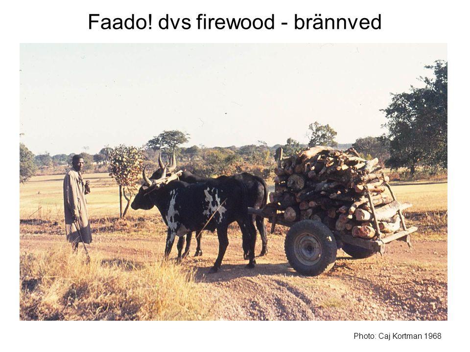 Faado! dvs firewood - brännved Photo: Caj Kortman 1968