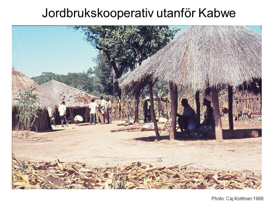 Jordbrukskooperativ utanför Kabwe Photo: Caj Kortman 1968