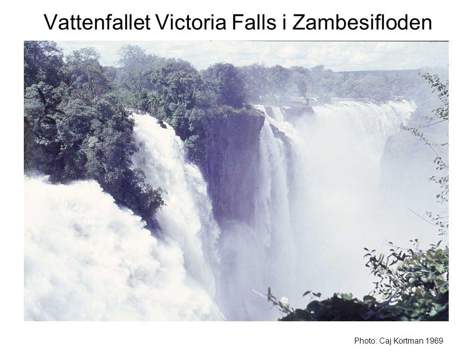Vattenfallet Victoria Falls i Zambesifloden Photo: Caj Kortman 1969