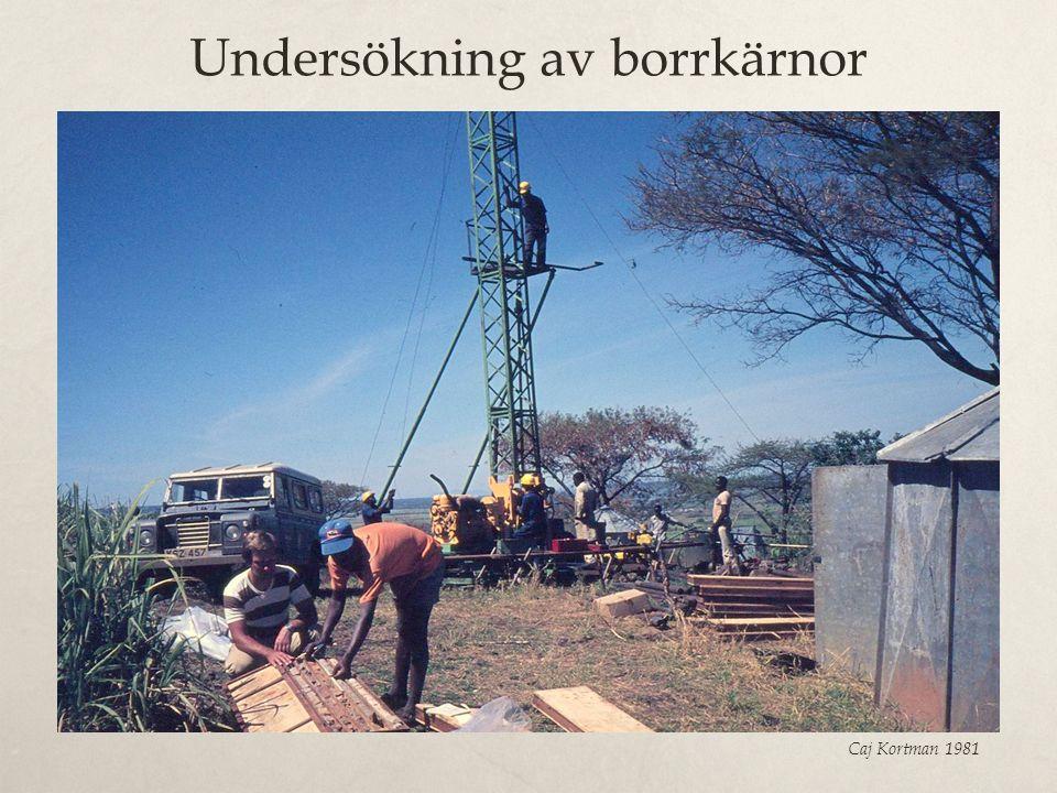 Undersökning av borrkärnor Caj Kortman 1981