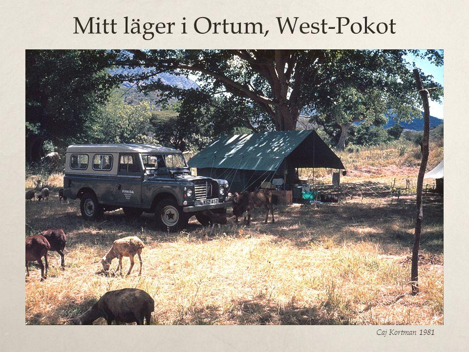 Mitt läger i Ortum, West-Pokot Caj Kortman 1981