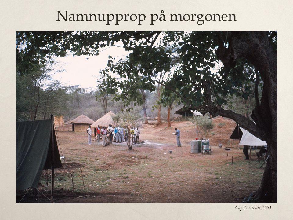 Namnupprop på morgonen Caj Kortman 1981
