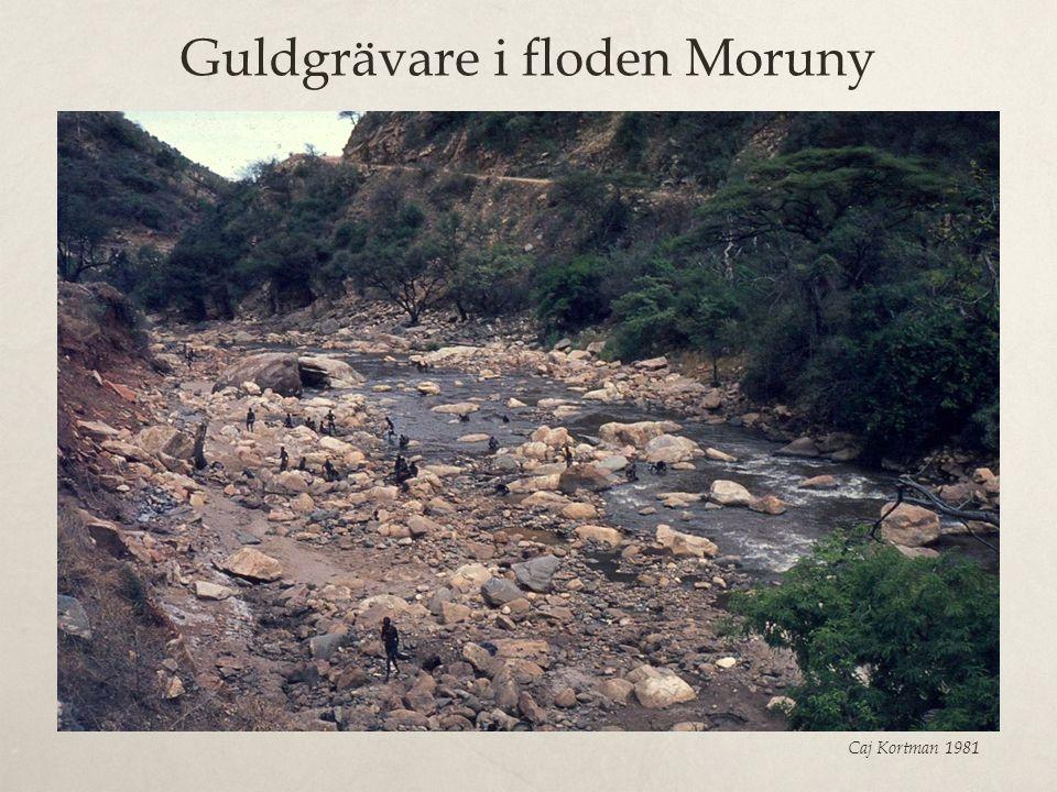 Guldgrävare i floden Moruny Caj Kortman 1981