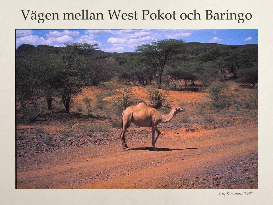Vägen mellan West Pokot och Baringo Caj Kortman 1981