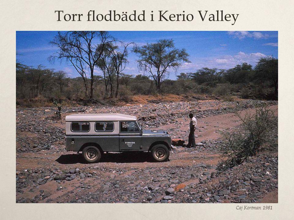 Torr flodbädd i Kerio Valley Caj Kortman 1981