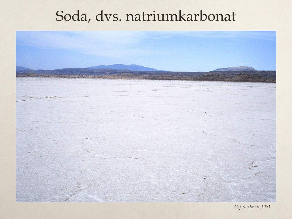 Soda, dvs. natriumkarbonat Caj Kortman 1981