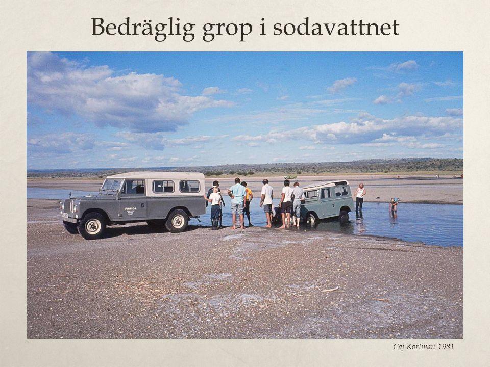 Bedräglig grop i sodavattnet Caj Kortman 1981