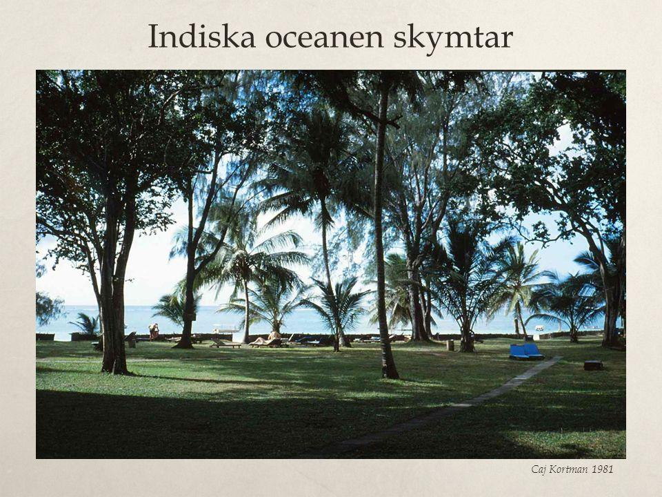 Indiska oceanen skymtar Caj Kortman 1981