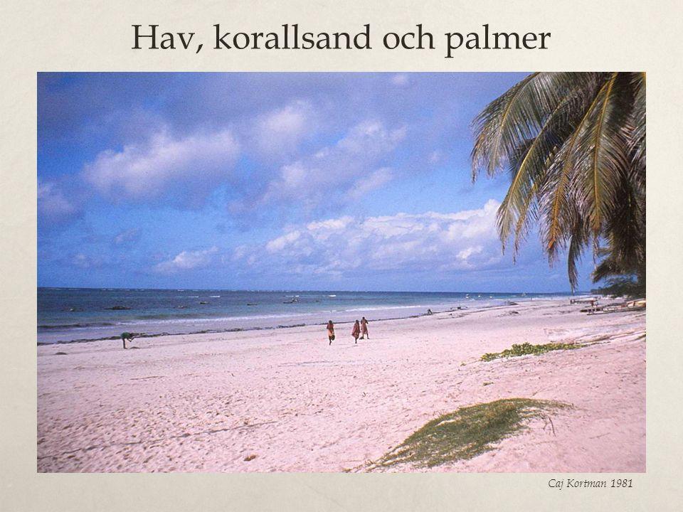 Hav, korallsand och palmer Caj Kortman 1981