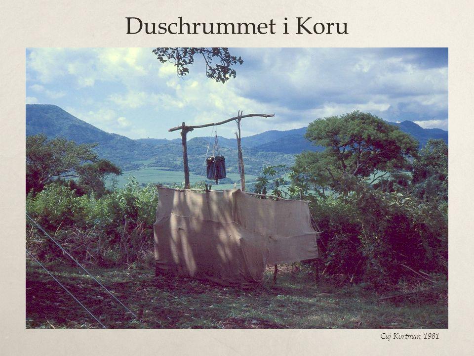 Duschrummet i Koru Caj Kortman 1981