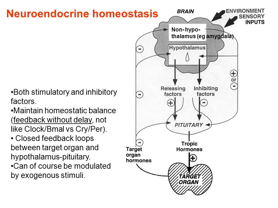 Both stimulatory and inhibitory factors.