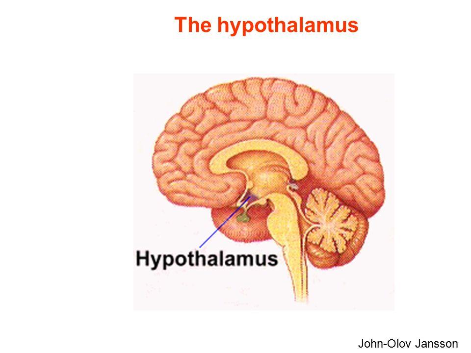 The hypothalamus John-Olov Jansson