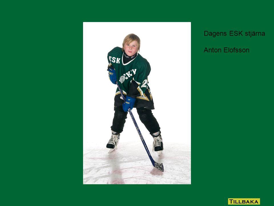 Dagens ESK stjärna och som även fyller 7 år idag. Philip Axtelius Grattis Tillbaka