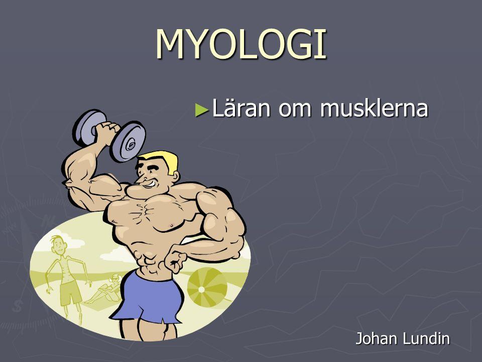 MYOLOGI ► Läran om musklerna Johan Lundin