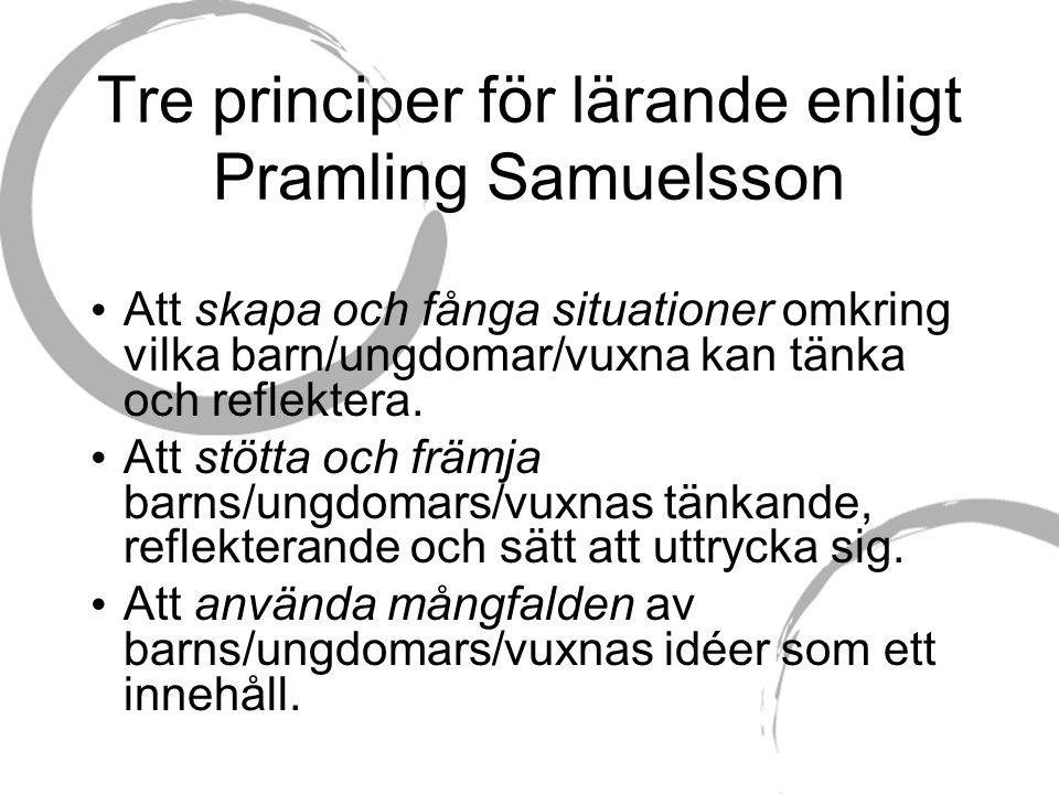Tre principer för lärande enligt Pramling Samuelsson Att skapa och fånga situationer omkring vilka barn/ungdomar/vuxna kan tänka och reflektera.