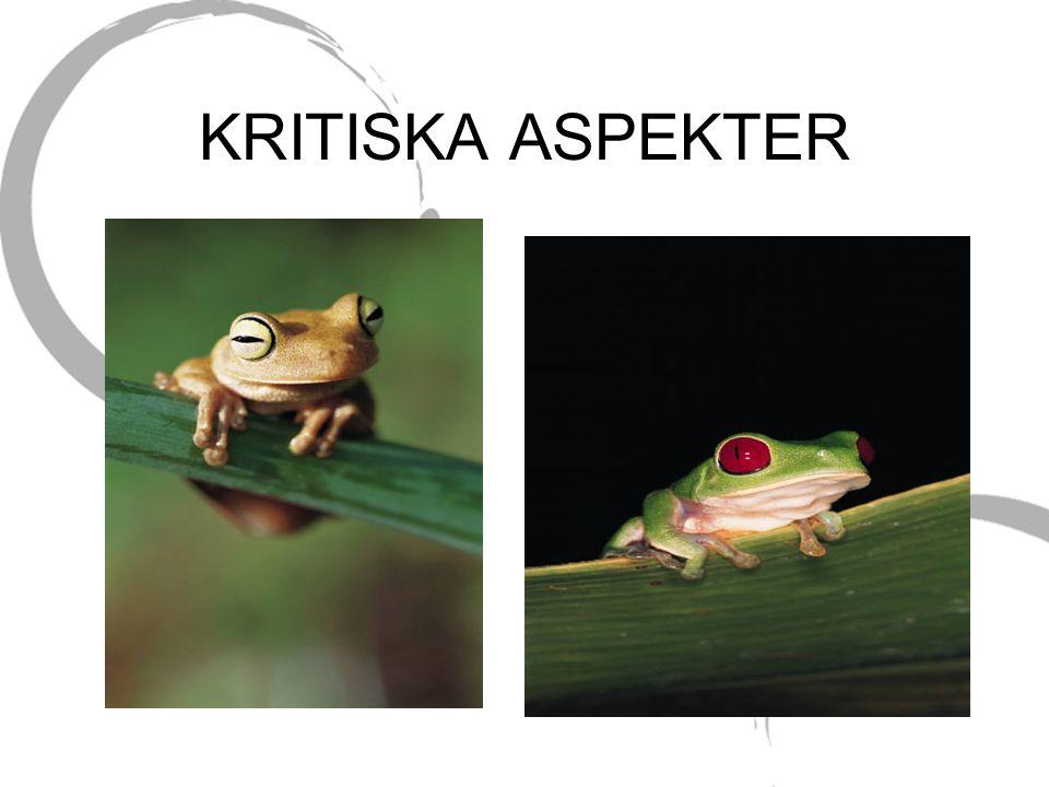 KRITISKA ASPEKTER