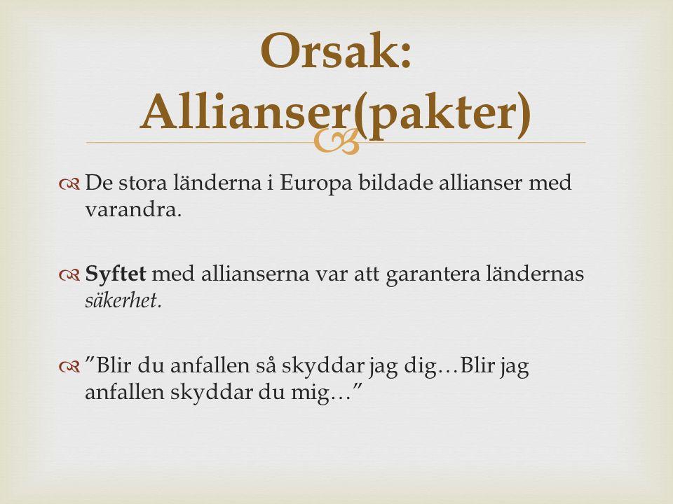   De stora länderna i Europa bildade allianser med varandra.