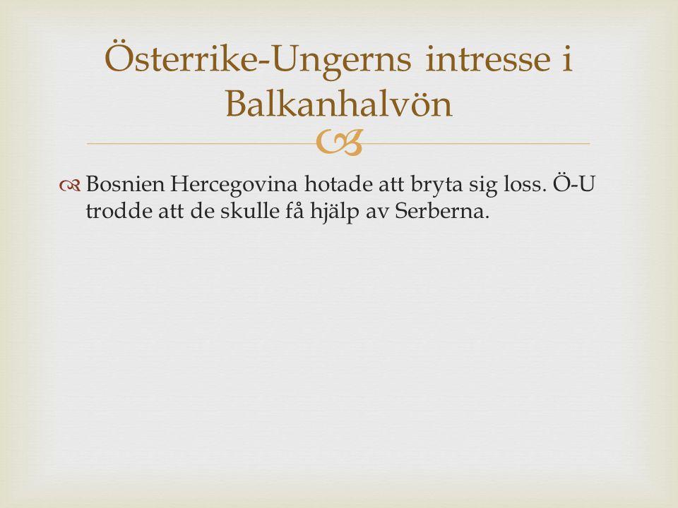   Bosnien Hercegovina hotade att bryta sig loss.