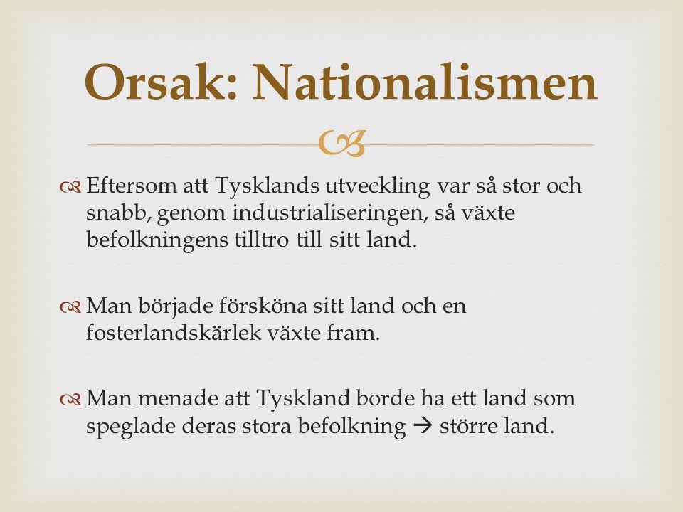   Nationalismen var stark även i många andra länder.