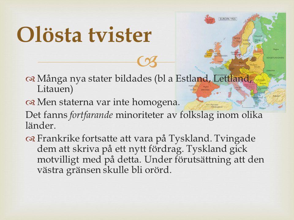   Många nya stater bildades (bl a Estland, Lettland, Litauen)  Men staterna var inte homogena.