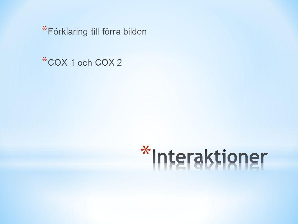 * Förklaring till förra bilden * COX 1 och COX 2