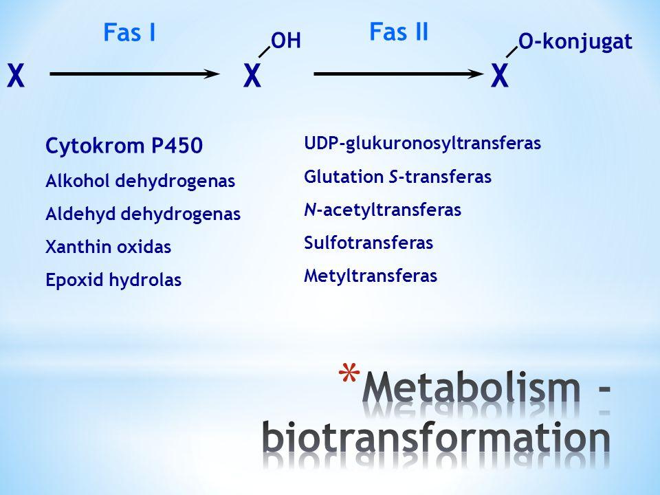 XXX OHO-konjugat Fas IFas II Cytokrom P450 Alkohol dehydrogenas Aldehyd dehydrogenas Xanthin oxidas Epoxid hydrolas UDP-glukuronosyltransferas Glutation S-transferas N-acetyltransferas Sulfotransferas Metyltransferas