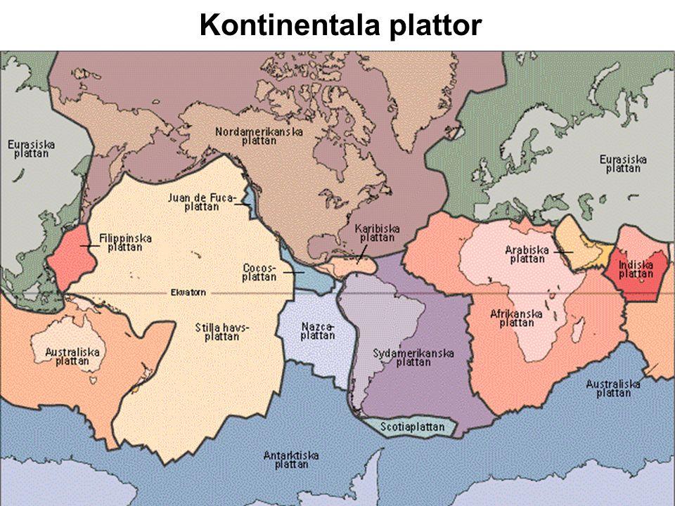 Kontinentala plattor