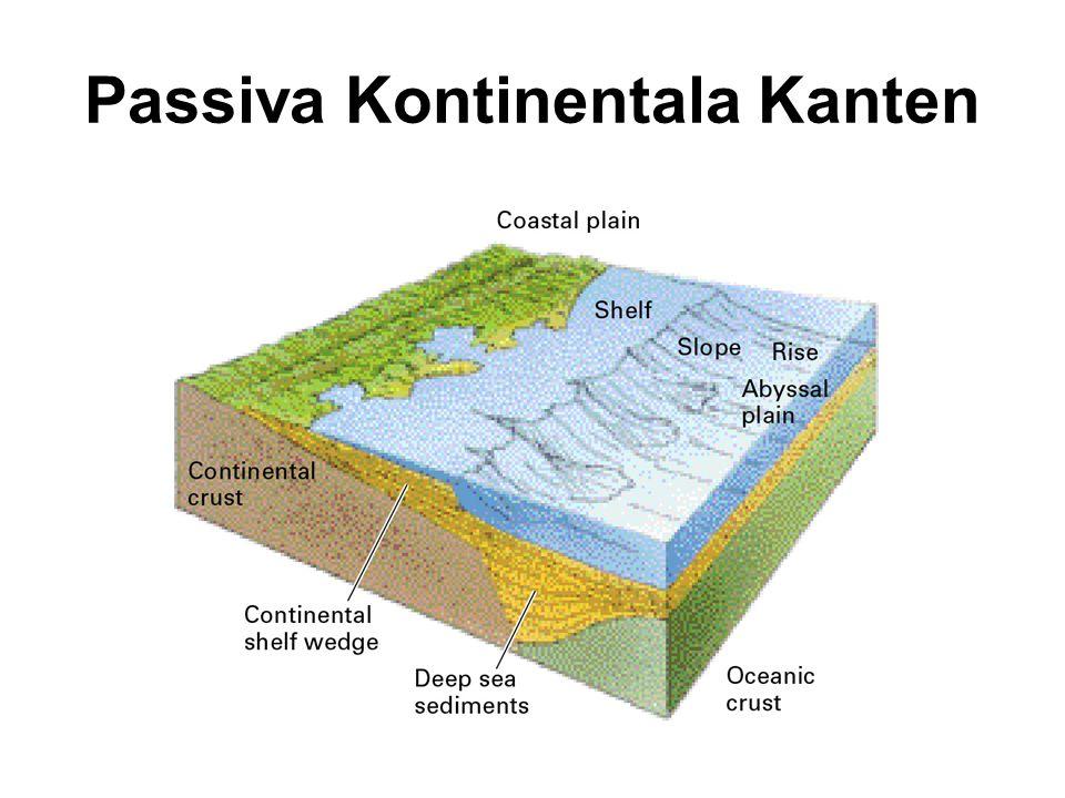 Passiva Kontinentala Kanten